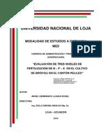 Ángel Germánico Llagua Rugel-Copiado
