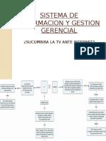 Sistema de Informacion y Gestion Gerencial