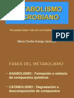 metabolismo1-2.ppt