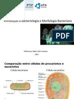 Introdução à Bacteriologia e Morfologia Bacteriana