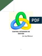 CONTROL_INTEGRADO_DE_GESTION.pdf
