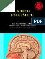 3.- TRONCO ENCEFALICO