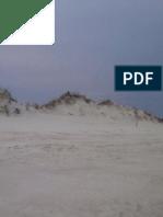 Eagle on Dune