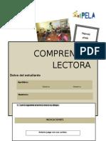 prueba2015-150615213501-lva1-app6892.docx
