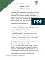 Informe Tecnico Analisis de Riesgos