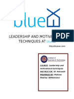 Leadership and Motivational Technique at BLUE-EX