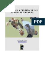 Identidad y Cultura de las Pandillas Juveniles
