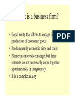 5. Institutional Structure Firms