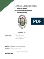 Plunger Lif Proyecto