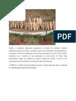 Timbila é Instrumento Tradicional Moçambicano Da Família Dos Xilofones