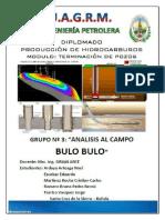 Proyecto Campo BULO BULO