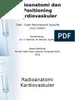 Radioanatomi