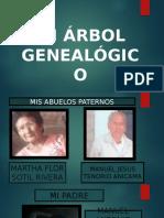 ARBOL GENEALOGICO.pptx