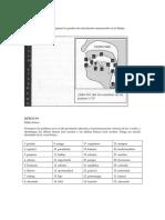 Ejercicio 1 - El Punto de Articulación, La Pronunciación de Silabas Tónicas y Átonas