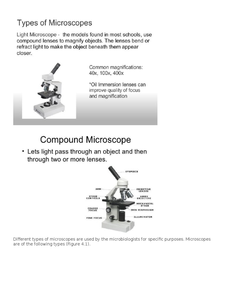 9edd76bc24f Different Types of Microscopes Are Used by the Microbiologists for Specific  Purposes
