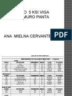 Ana Milena Concreto