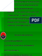 Xiv Congreso Peruano de Horticultura