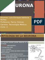 FISIOLOGÍA NEUROLOGICA (1).pptx