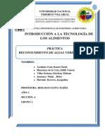 Reconocimiento de Algas (1)