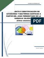 Informe_de_Microbiologia_Grupo_1.pdf