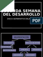 2 SEM. DESARROLLO DISCO GERMINATIVO BILAMINAR.ppt