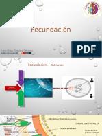 Fecundación 2..pptx