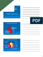 3 El Proceso de La Auditoria Integral