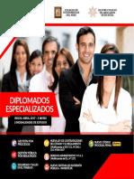 Brochure - Diplomados Abril-Junio 2017