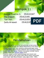 20923_27651_Presentation1