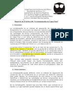 Reporte Práctica #6 (Q. Orgánica I)