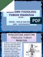 Anatomi Fisiologi Tubuh Manusia