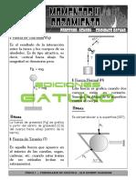 MOMENTOS DE FUERZA MENDEL.pdf