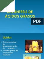 Sint Ac Grasos2011 (1)