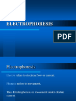 Electrophoresis Diff Types