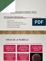 Virus de la Rubeola