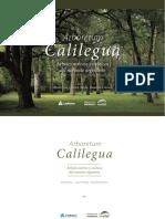 ArboretumLedesma Web (1)