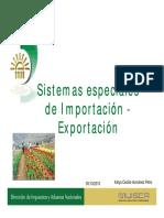 Diligenciamiento_informacion_sistemas_especiales_en_DEX.pdf