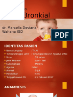 Asma Bronkial