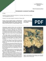 Three Cotyledons on Schinziophyton Rautanenii Seedlings