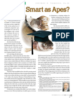 Fish as Smart Apes