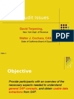 SAPAuditIssues-CA.ppt