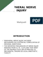 Pepripheral Nerve Injury