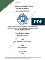 AguilarMoscoso_L.pdf