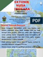 Tektonik Nusa Tenggara