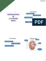 Anatomía Renal