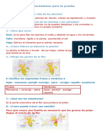 16235183-Preparandonos-para-la-prueba.docx