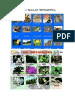 Flora y Fauna de Centroameric1