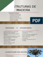1. Estrutura Da Madeira