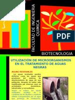 13-Diapositivas Biotecnologia Finales