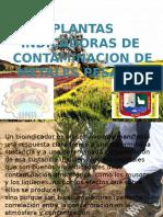 PLANTAS B.I.M